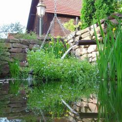 Le jardin de la GrAnge - le bassin (2007)