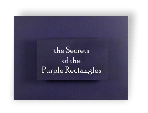 Logo en secrets purple rectangles