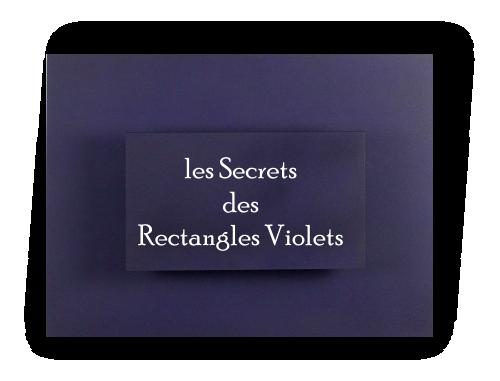Logo fr secrets rectangles violets