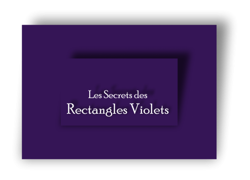 Logo secrets rectangles violets