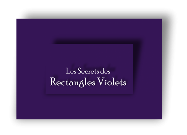 Logo secrets rectangles violets