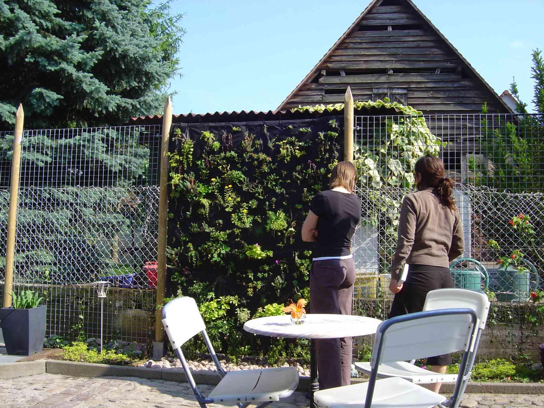 Le jardin de la GrAnge - mur végétal en 2007